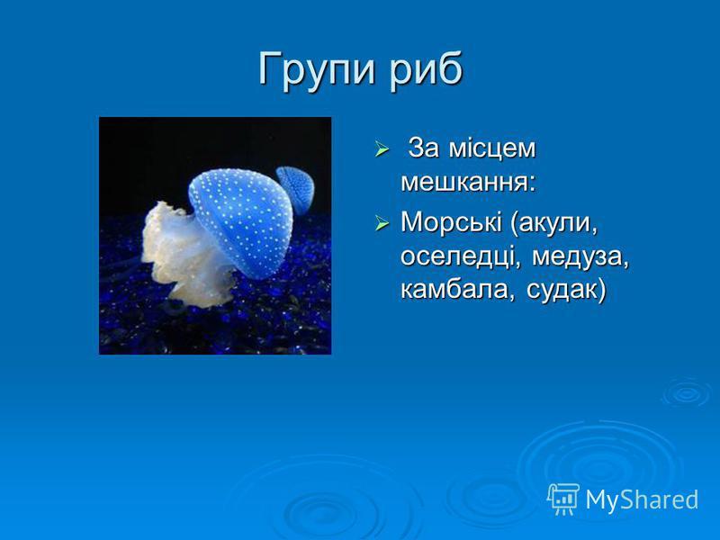 Групи риб З За місцем мешкання: Морські (акули, оселедці, медуза, камбала, судак)