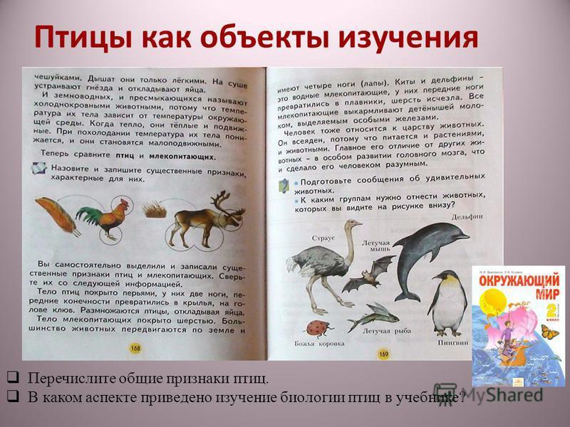 Птицы как объекты изучения Перечислите общие признаки птиц. В каком аспекте приведено изучение биологии птиц в учебнике?