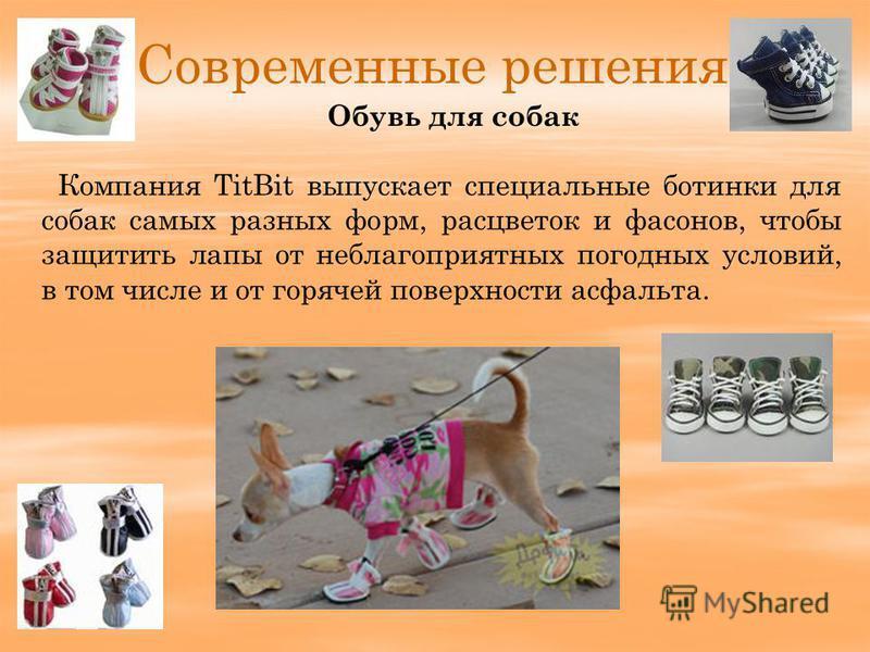 Современные решения Компания TitBit выпускает специальные ботинки для собак самых разных форм, расцветок и фасонов, чтобы защитить лапы от неблагоприятных погодных условий, в том числе и от горячей поверхности асфальта. Обувь для собак