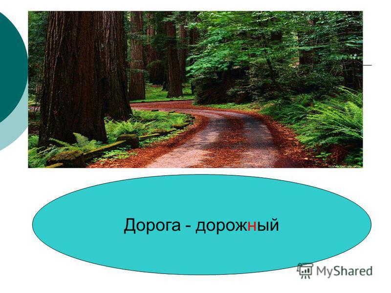 Дорога - дорожный