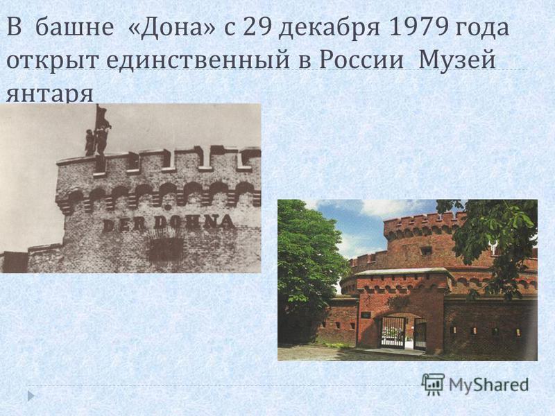 В башне « Дона » с 29 декабря 1979 года открыт единственнай в России Музей янтаря