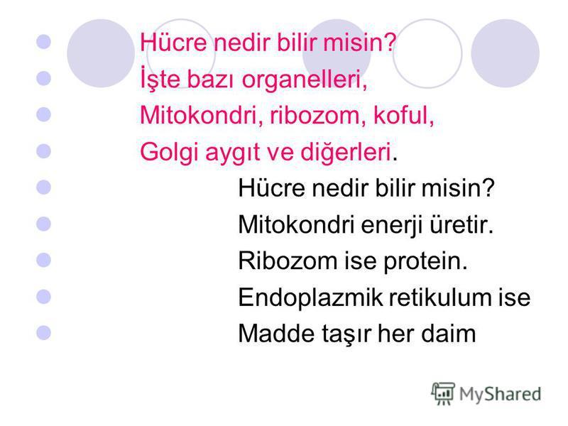 Hücre nedir bilir misin? İşte bazı organelleri, Mitokondri, ribozom, koful, Golgi aygıt ve diğerleri. Hücre nedir bilir misin? Mitokondri enerji üretir. Ribozom ise protein. Endoplazmik retikulum ise Madde taşır her daim