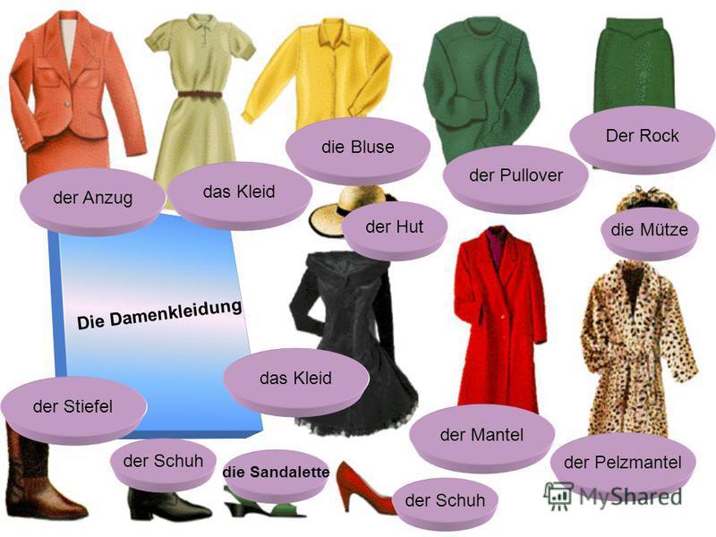 Die Damenkleidung der Anzug das Kleid die Bluse der Pullover Der Rock der Hut die Mütze der Pelzmantel der Mantel das Kleid der Stiefel der Schuh die Sandalette der Schuh