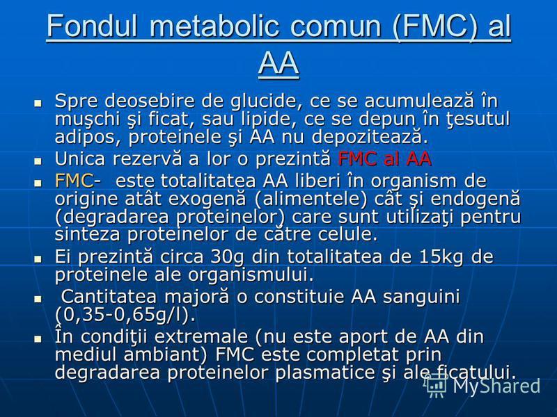 Fondul metabolic comun (FMC) al AA Spre deosebire de glucide, ce se acumulează în muşchi şi ficat, sau lipide, ce se depun în ţesutul adipos, proteinele şi AA nu depozitează. Spre deosebire de glucide, ce se acumulează în muşchi şi ficat, sau lipide,