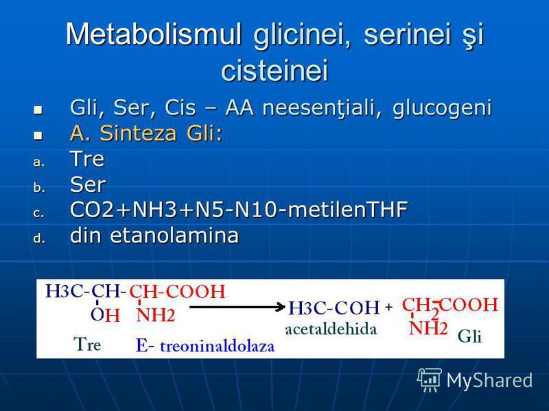 Metabolismul glicinei, serinei şi cisteinei Gli, Ser, Cis – AA neesenţiali, glucogeni Gli, Ser, Cis – AA neesenţiali, glucogeni A. Sinteza Gli: A. Sinteza Gli: a. Tre b. Ser c. CO2+NH3+N5-N10-metilenTHF d. din etanolamina