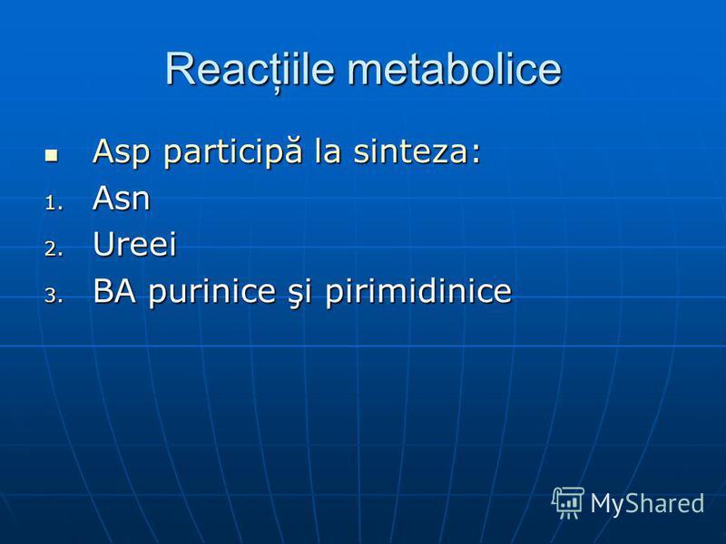 Reacţiile metabolice Asp participă la sinteza: Asp participă la sinteza: 1. Asn 2. Ureei 3. BA purinice şi pirimidinice