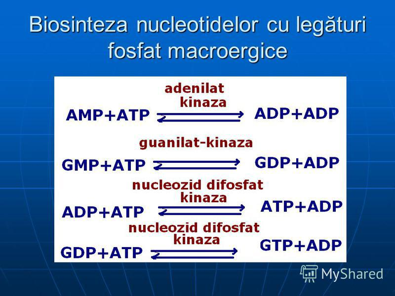 Biosinteza nucleotidelor cu legături fosfat macroergice