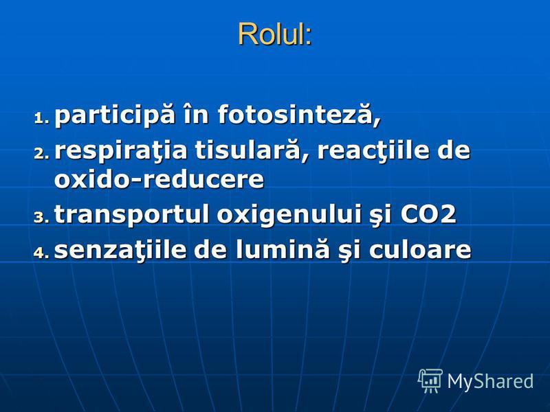 Rolul: 1. participă în fotosinteză, 2. respiraţia tisulară, reacţiile de oxido-reducere 3. transportul oxigenului şi CO2 4. senzaţiile de lumină şi culoare