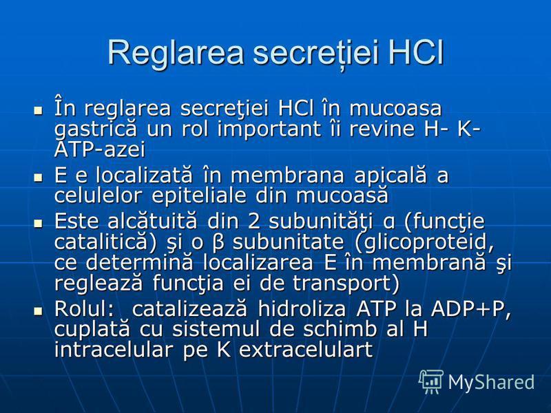 Reglarea secreţiei HCl În reglarea secreţiei HCl în mucoasa gastrică un rol important îi revine H- K- ATP-azei În reglarea secreţiei HCl în mucoasa gastrică un rol important îi revine H- K- ATP-azei E e localizată în membrana apicală a celulelor epit