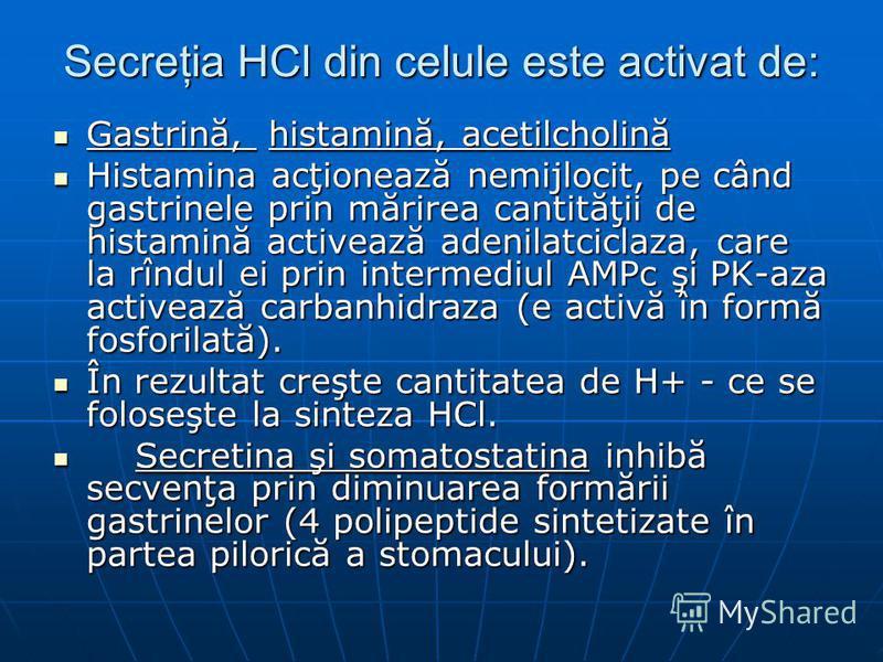 Secreţia HCl din celule este activat de: Gastrină, histamină, acetilcholină Gastrină, histamină, acetilcholină Histamina acţionează nemijlocit, pe când gastrinele prin mărirea cantităţii de histamină activează adenilatciclaza, care la rîndul ei prin