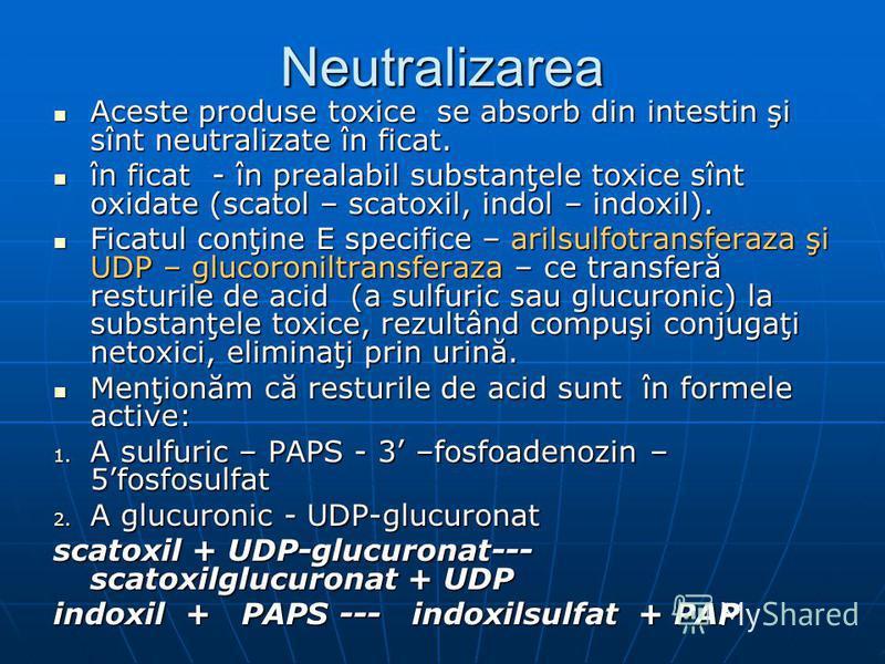 Neutralizarea Aceste produse toxice se absorb din intestin şi sînt neutralizate în ficat. Aceste produse toxice se absorb din intestin şi sînt neutralizate în ficat. în ficat - în prealabil substanţele toxice sînt oxidate (scatol – scatoxil, indol –