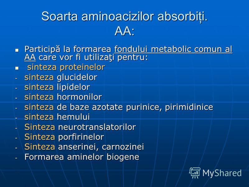 Soarta aminoacizilor absorbiţi. AA: Participă la formarea fondului metabolic comun al AA care vor fi utilizaţi pentru: Participă la formarea fondului metabolic comun al AA care vor fi utilizaţi pentru: sinteza proteinelor sinteza proteinelor - sintez