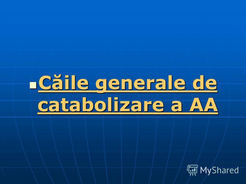 Căile generale de catabolizare a AA Căile generale de catabolizare a AA