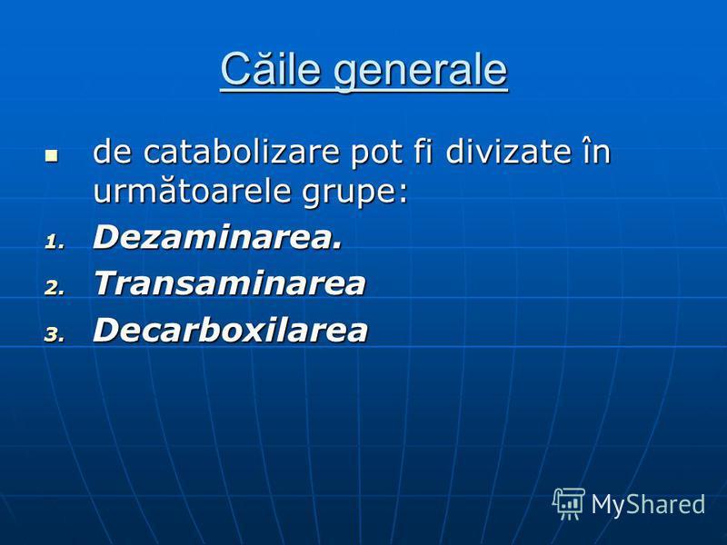 Căile generale de catabolizare pot fi divizate în următoarele grupe: de catabolizare pot fi divizate în următoarele grupe: 1. Dezaminarea. 2. Transaminarea 3. Decarboxilarea