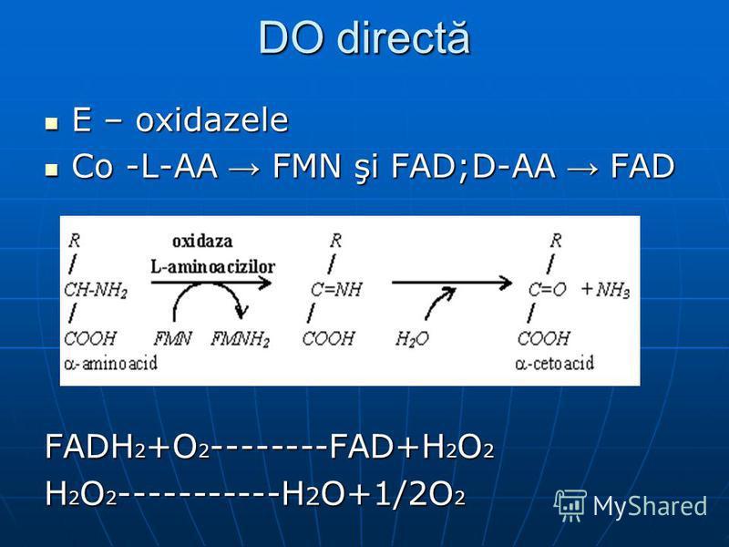 DO directă E – oxidazele E – oxidazele Co -L-AA FMN şi FAD;D-AA FAD Co -L-AA FMN şi FAD;D-AA FAD FADH 2 +O 2 --------FAD+H 2 O 2 H 2 O 2 -----------H 2 O+1/2O 2
