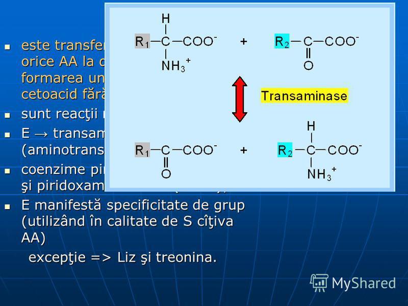 Transaminarea este transferul aminogrupei de la orice AA la α-cetoacid, cu formarea unui nou AA şi nou cetoacid fără formarea de NH3. este transferul aminogrupei de la orice AA la α-cetoacid, cu formarea unui nou AA şi nou cetoacid fără formarea de N