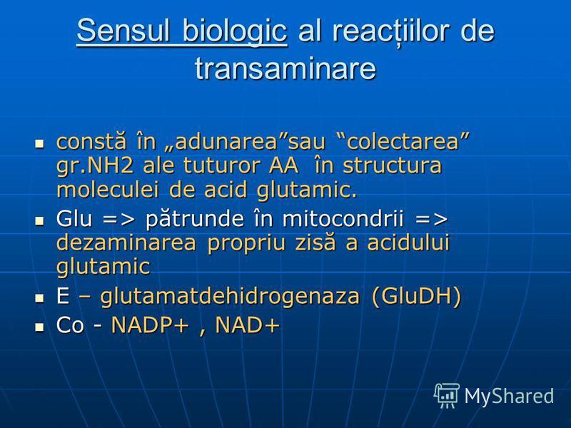 Sensul biologic al reacţiilor de transaminare constă în adunareasau colectarea gr.NH2 ale tuturor AA în structura moleculei de acid glutamic. constă în adunareasau colectarea gr.NH2 ale tuturor AA în structura moleculei de acid glutamic. Glu => pătru