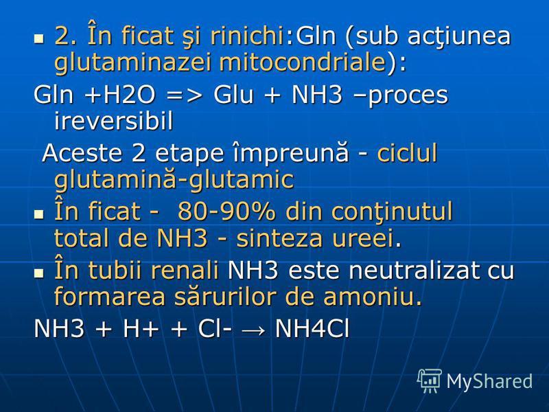 2. În ficat şi rinichi:Gln (sub acţiunea glutaminazei mitocondriale): 2. În ficat şi rinichi:Gln (sub acţiunea glutaminazei mitocondriale): Gln +H2O => Glu + NH3 –proces ireversibil Aceste 2 etape împreună - ciclul glutamină-glutamic Aceste 2 etape î