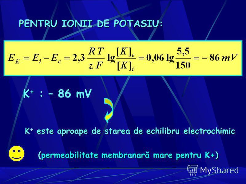 K + : – 86 mV (permeabilitate membranară mare pentru K+) K + este aproape de starea de echilibru electrochimic PENTRU IONII DE POTASIU: