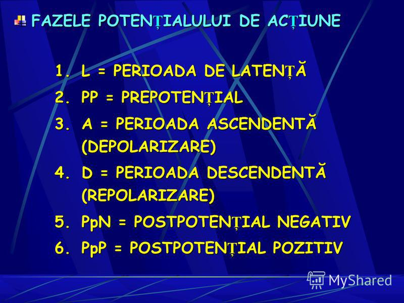 1.L = PERIOADA DE LATENŢĂ 2.P P = PREPOTENŢIAL 3.A = PERIOADA ASCENDENTĂ (DEPOLARIZARE) 4.D = PERIOADA DESCENDENTĂ (REPOLARIZARE) 5.P pN = POSTPOTENŢIAL NEGATIV 6.P pP = POSTPOTENŢIAL POZITIV FAZELE POTEN Ţ IALULUI DE AC Ţ IUNE FAZELE POTEN Ţ IALULUI