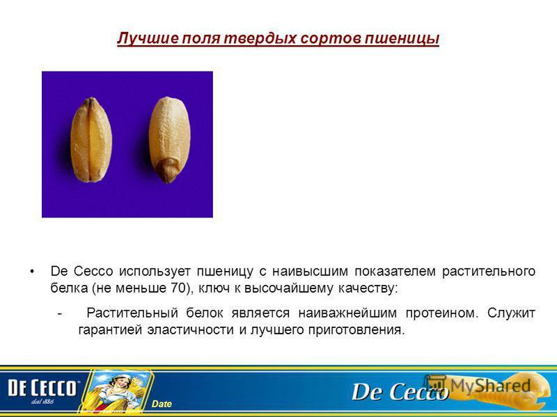 Date Лучшие поля твердых сортов пшеницы De Cecco использует пшеницу с наивысшим показателем растительного белка (не меньше 70), ключ к высочайшему качеству: - Растительный белок является наиважнейшим протеином. Служит гарантией эластичности и лучшего