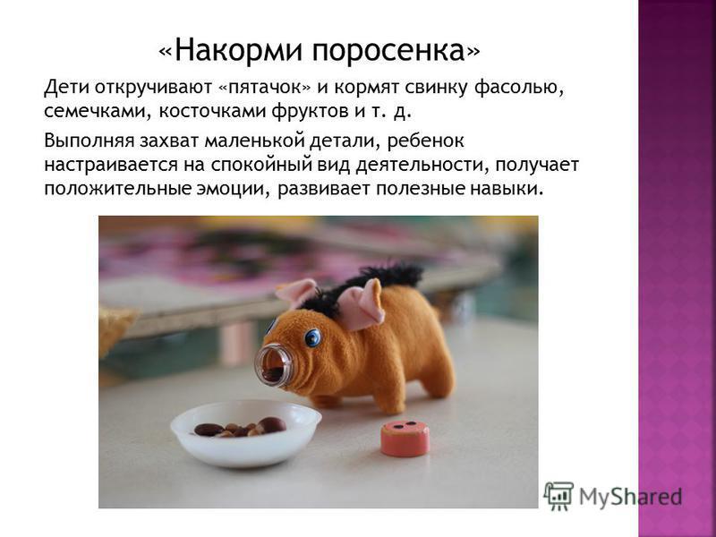 «Накорми поросенка» Дети откручивают «пятачок» и кормят свинку фасолью, семечками, косточками фруктов и т. д. Выполняя захват маленькой детали, ребенок настраивается на спокойный вид деятельности, получает положительные эмоции, развивает полезные нав