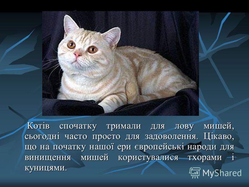Котів спочатку тримали для лову мишей, сьогодні часто просто для задоволення. Цікаво, що на початку нашої ери європейські народи для винищення мишей користувалися тхорами і куницями. Котів спочатку тримали для лову мишей, сьогодні часто просто для за