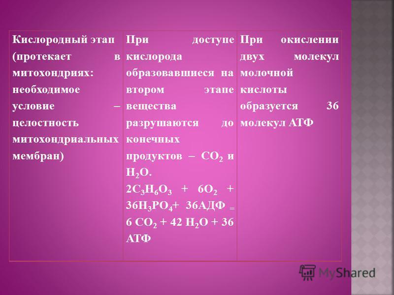Кислородный этап (протекает в митохондриях: необходимое условие – целостность митохондриальных мембран) При доступе кислорода образовавшиеся на втором этапе вещества разрушаются до конечных продуктов – CO 2 и Н 2 О. 2C 3 H 6 O 3 + 6O 2 + 36H 3 PO 4 +