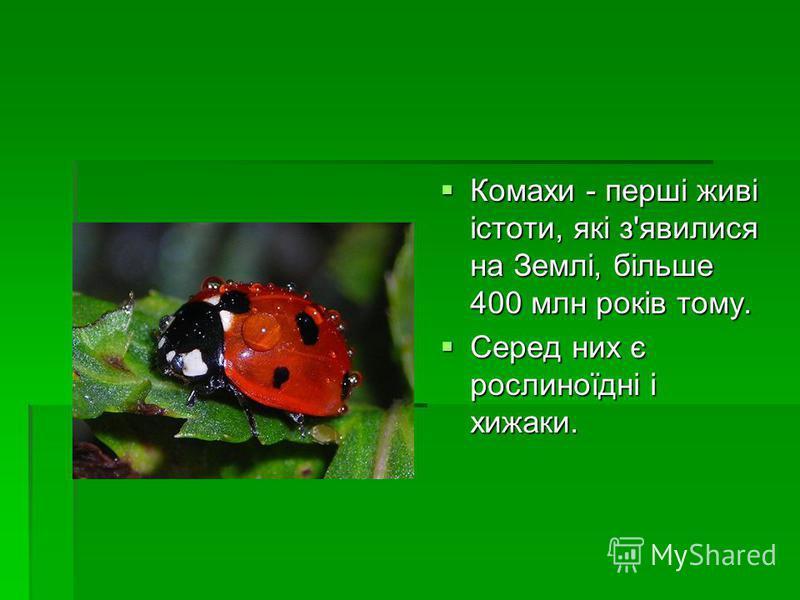 Комахи - перші живі істоти, які з'явилися на Землі, більше 400 млн років тому. Комахи - перші живі істоти, які з'явилися на Землі, більше 400 млн років тому. Серед них є рослиноїдні і хижаки. Серед них є рослиноїдні і хижаки.