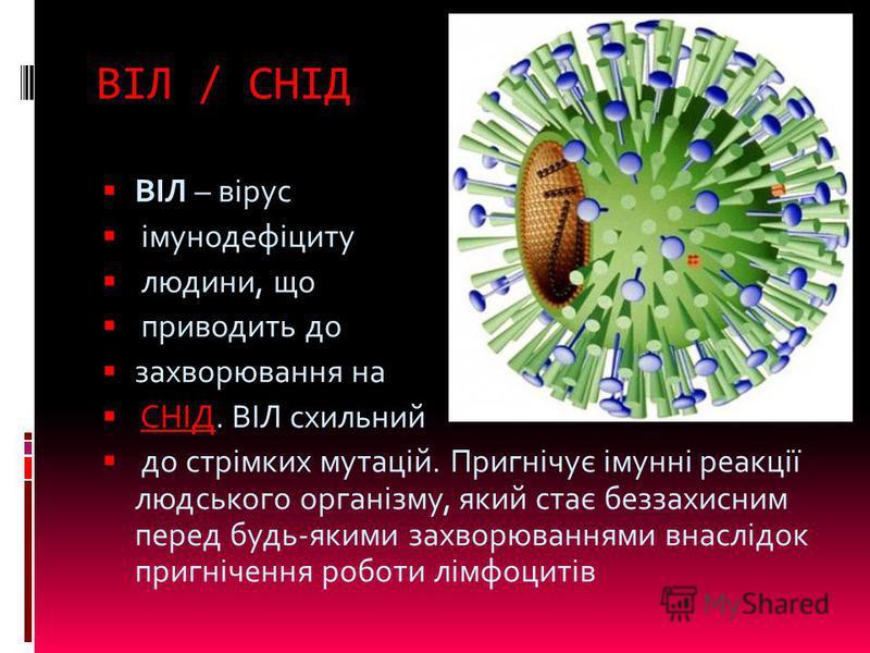ВІЛ / СНІД ВІЛ – вірус імунодефіциту людини, що приводить до захворювання на СНІД. ВІЛ схильнийСНІД до стрімких мутацій. Пригнічує імунні реакції людського організму, який стає беззахисним перед будь-якими захворюваннями внаслідок пригнічення роботи
