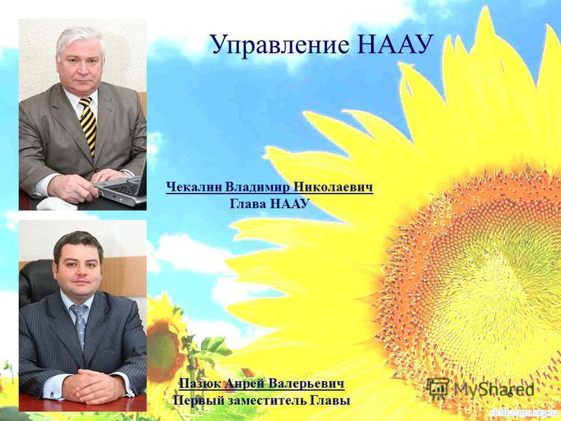 6 Чекалин Владимир Николаевич Глава НААУ Пазюк Анрей Валерьевич Первый заместитель Главы Управление НААУ