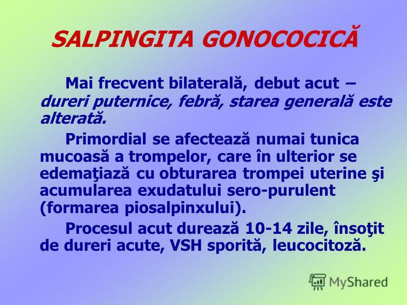 SALPINGITA GONOCOCICĂ Mai frecvent bilaterală, debut acut – dureri puternice, febră, starea generală este alterată. Primordial se afectează numai tunica mucoasă a trompelor, care în ulterior se edemaţiază cu obturarea trompei uterine şi acumularea ex