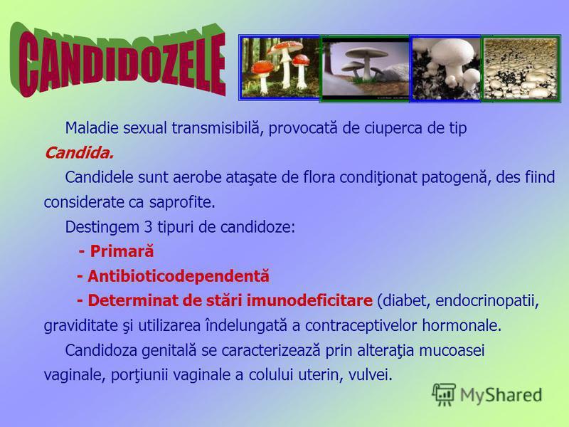 Maladie sexual transmisibilă, provocată de ciuperca de tip Candida. Candidele sunt aerobe ataşate de flora condiţionat patogenă, des fiind considerate ca saprofite. Destingem 3 tipuri de candidoze: - Primară - Antibioticodependentă - Determinat de st