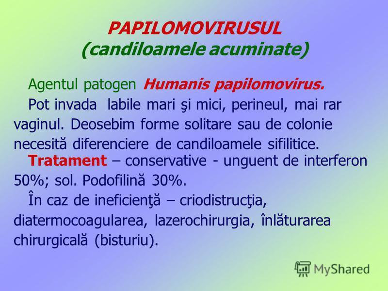 PAPILOMOVIRUSUL (candiloamele acuminate) Agentul patogen Humanis papilomovirus. Pot invada labile mari şi mici, perineul, mai rar vaginul. Deosebim forme solitare sau de colonie necesită diferenciere de candiloamele sifilitice. Tratament – conservati