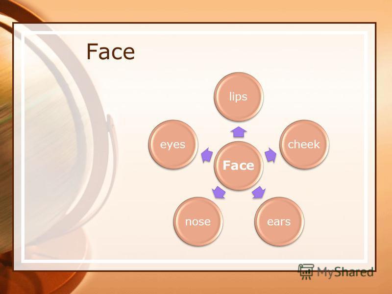 Face lipscheekearsnoseeyes