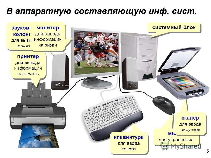 5 системный блок звуковые колонки для вывода звука принтер для вывода информации на печать принтер для вывода информации на печать мышь для управления сканер для ввода рисунков сканер для ввода рисунков монитор для вывода информации на экран монитор