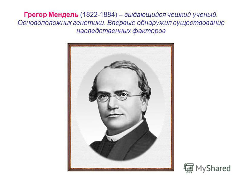 gregor mendel lab Gregor mendel was an ____ monk who investigated inheritance of ____ different traits in the garden ____ and devised a set of principles to explain the transmission of those characteristics austrian 7 pea gregor mendel did his investigations in the mid- ____.
