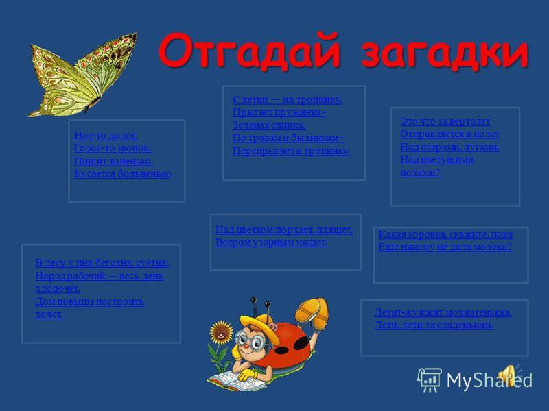 Загадки о насекомых Автор: воспитатель Ишмуратова Н.А.