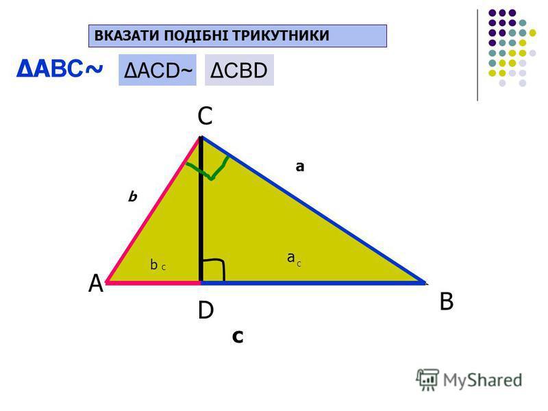 Прямокутний трикутник А С В D b a c b C a C