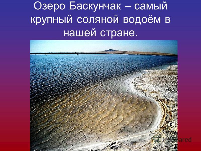 Озеро Баскунчак – самый крупный соляной водоём в нашей стране.