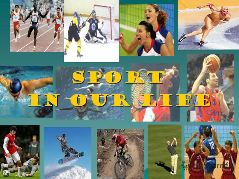 Sport Sport in Our Life