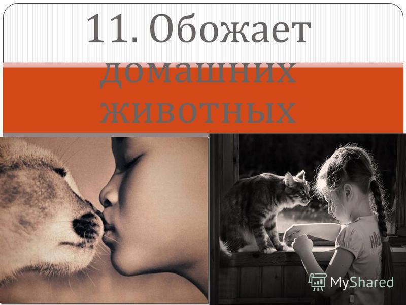11. Обожает домашних животных