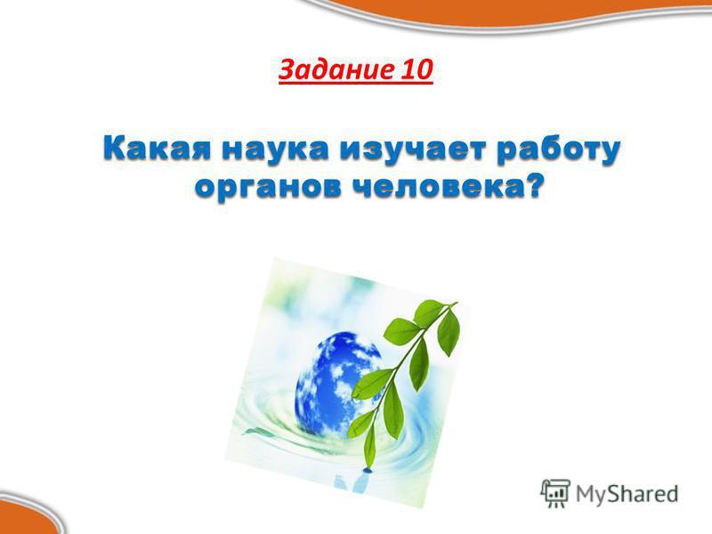 Задание 10 Какая наука изучает работу органов человека? Какая наука изучает работу органов человека?
