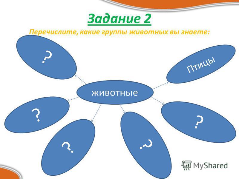 Задание 2 Перечислите, какие группы животных вы знаете: животные Птицы ? ? ? ? ?