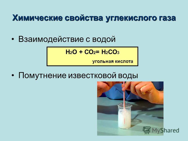 Химические свойства углекислого газа Взаимодействие с водой Помутнение известковой воды H 2 О + СО 2 = Н 2 СО 3 угольная кислота