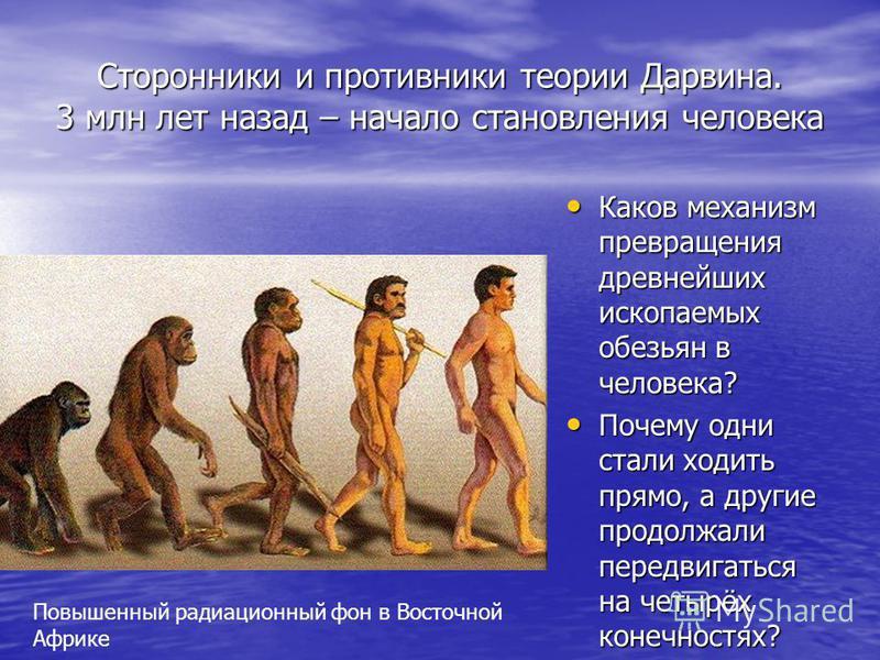 Сторонники и противники теории Дарвина. 3 млн лет назад – начало становления человека Каков механизм превращения древнейших ископаемых обезьян в человека? Каков механизм превращения древнейших ископаемых обезьян в человека? Почему одни стали ходить п