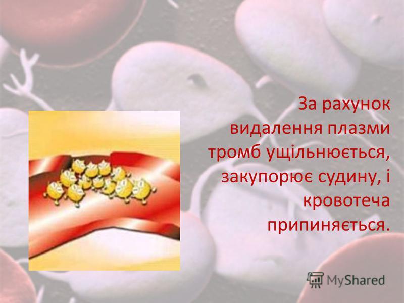 За рахунок видалення плазми тромб ущільнюється, закупорює судину, і кровотеча припиняється.