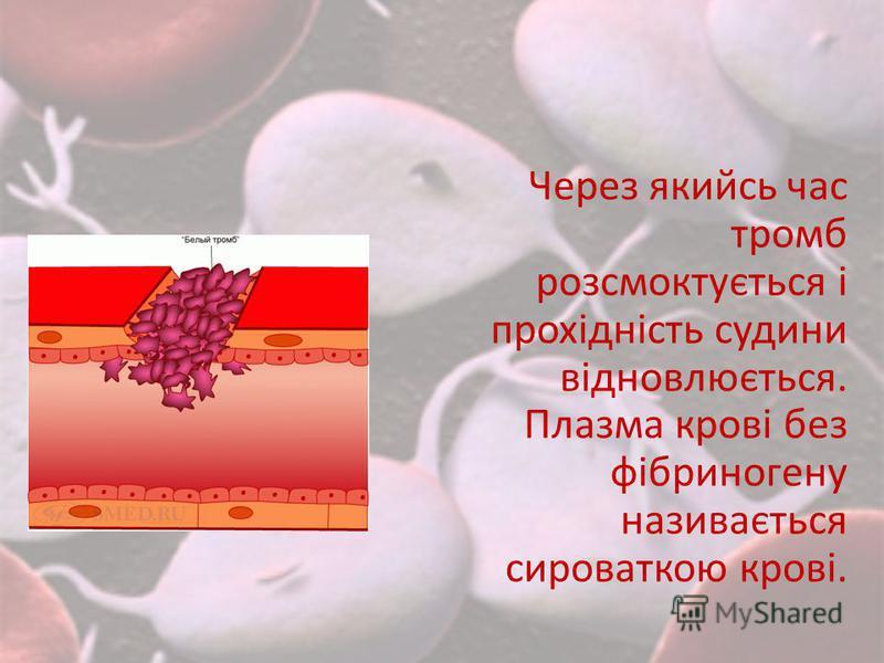 Через якийсь час тромб розсмоктується і прохідність судини відновлюється. Плазма крові без фібриногену називається сироваткою крові.