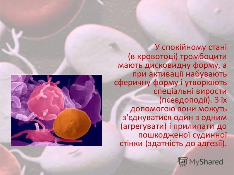 У спокійному стані (в кровотоці) тромбоцити мають дисковидну форму, а при активації набувають сферичну форму і утворюють спеціальні вирости (псевдоподії). З їх допомогою вони можуть з'єднуватися один з одним (агрегувати) і прилипати до пошкодженої су