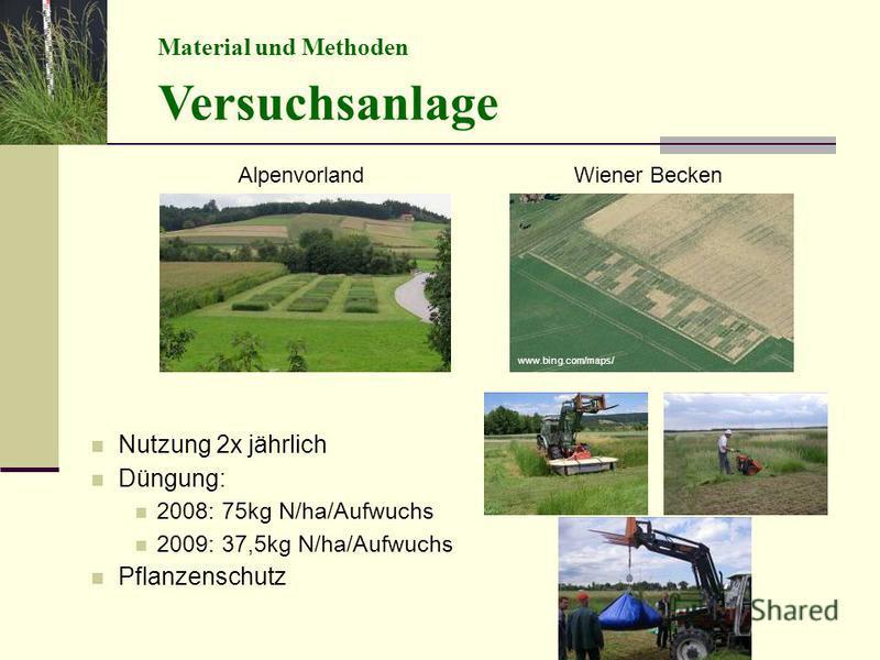 Nutzung 2x jährlich Düngung: 2008: 75kg N/ha/Aufwuchs 2009: 37,5kg N/ha/Aufwuchs Pflanzenschutz Material und Methoden Versuchsanlage AlpenvorlandWiener Becken www.bing.com/maps/